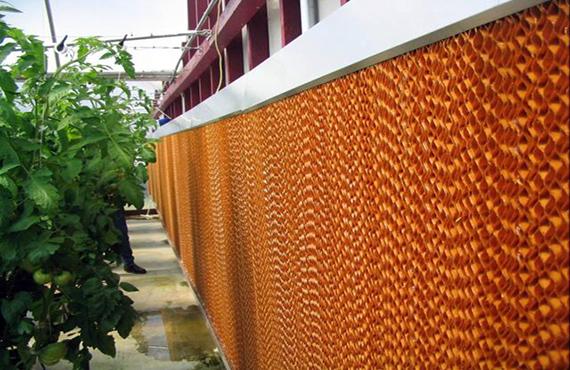 Охлаждане на оранжерии